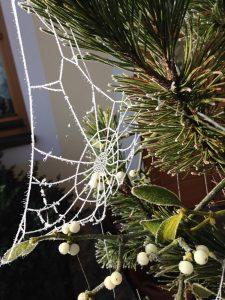 Weihnachten und Winterzeit