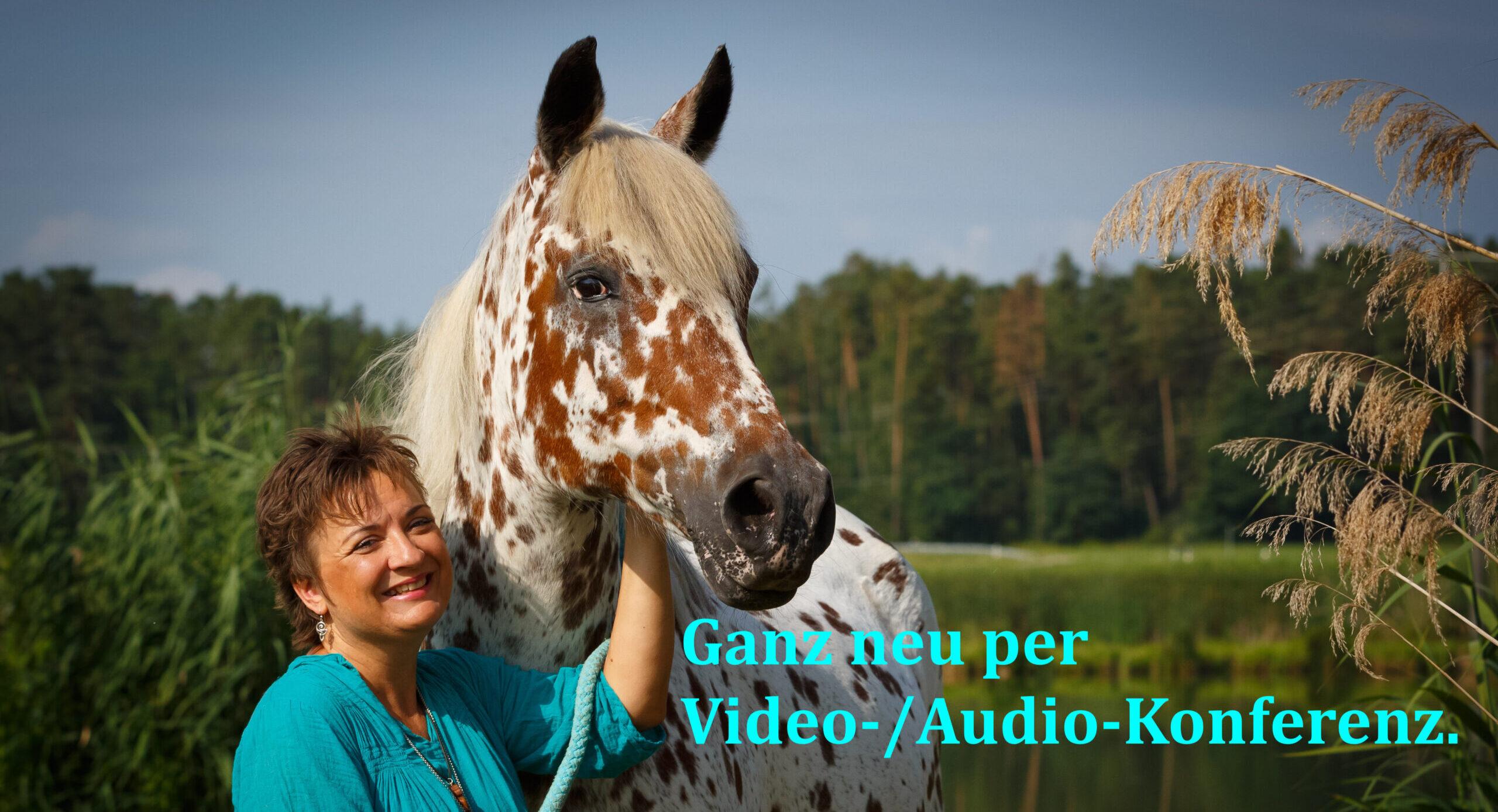 Tierkommunikations-Basisseminar online