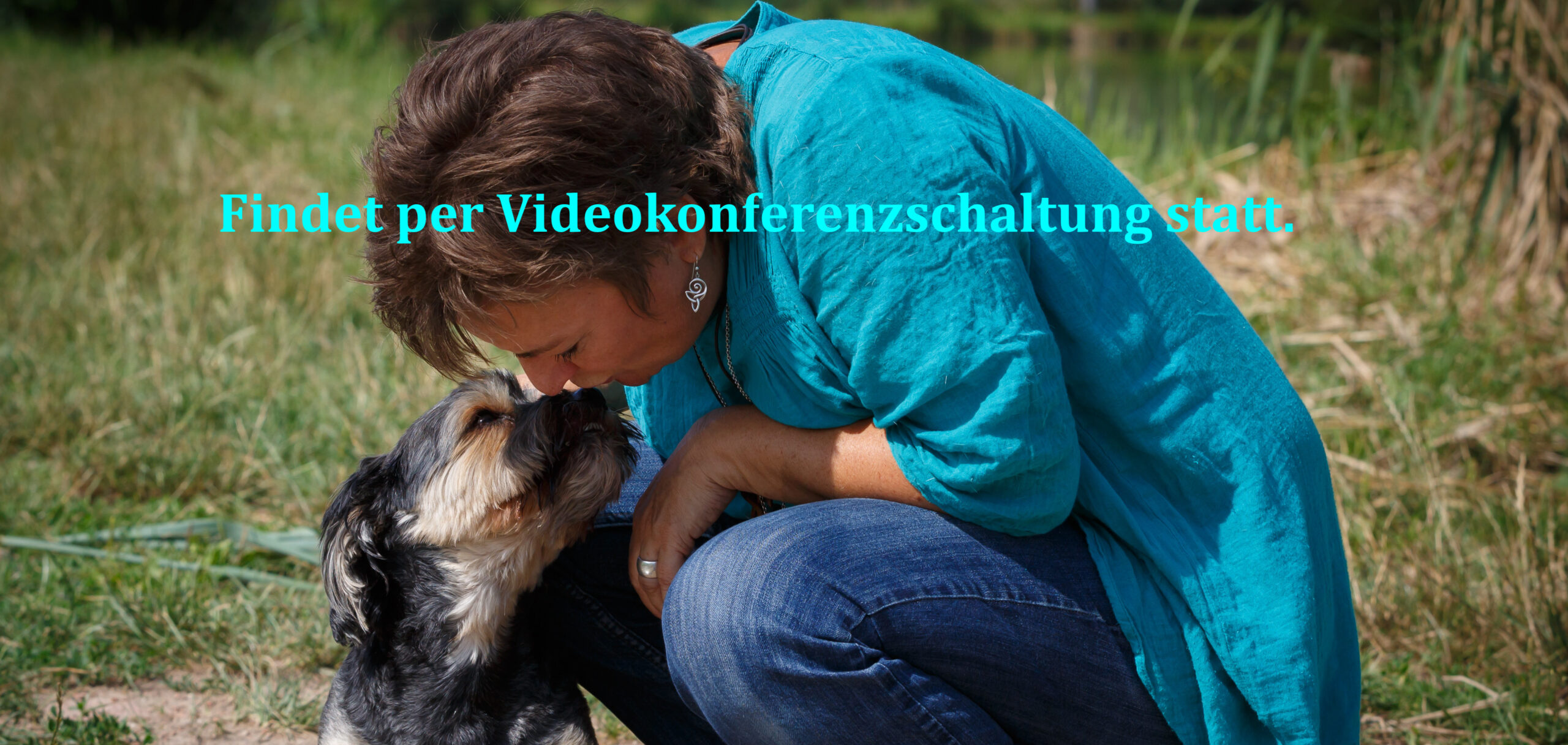 Online Infoabend Tierkommunikation
